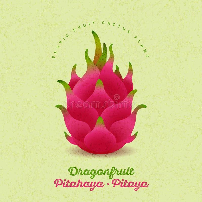 Pitaya, illustrazione di pitahaya Frutta matura rossa del drago su fondo misero Illustrazione originale royalty illustrazione gratis