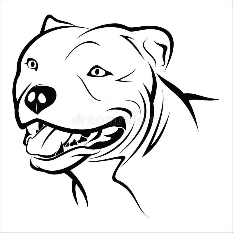 Free Pitbull Stock Image - 51979811
