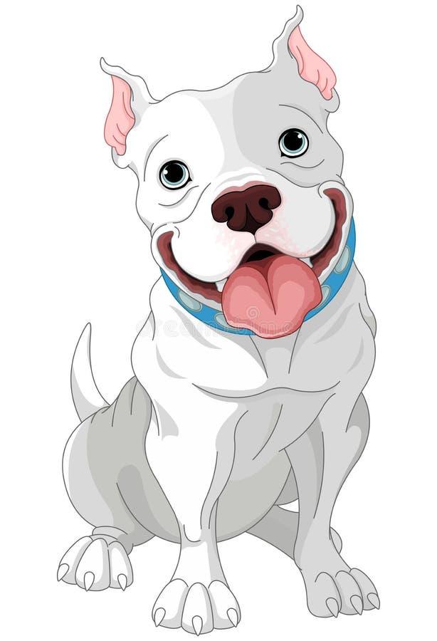 Pitbull ilustração do vetor