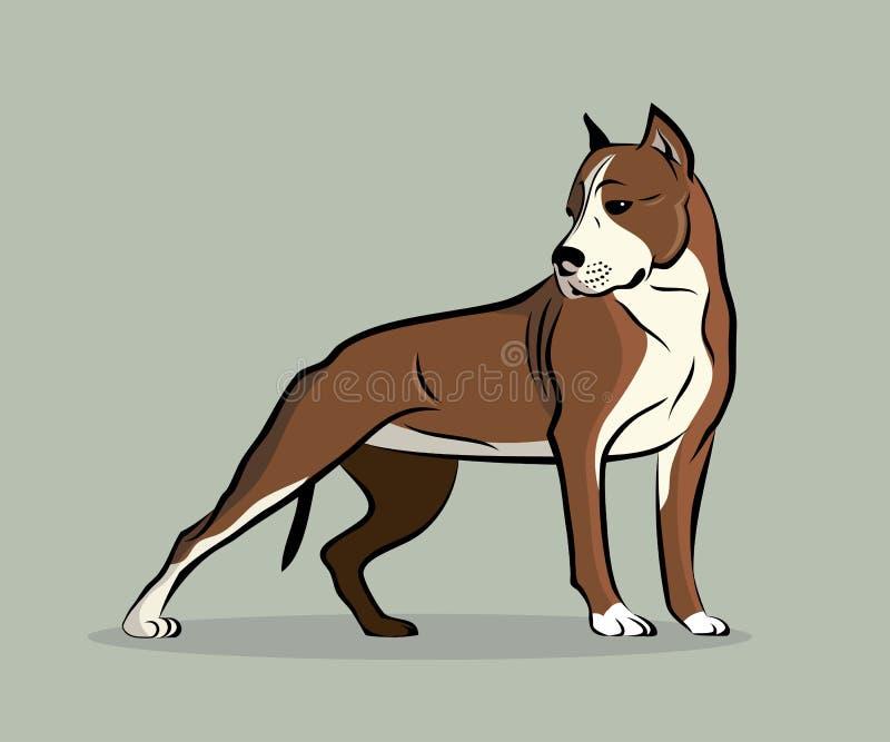 Pitbull Terrier illustration stock