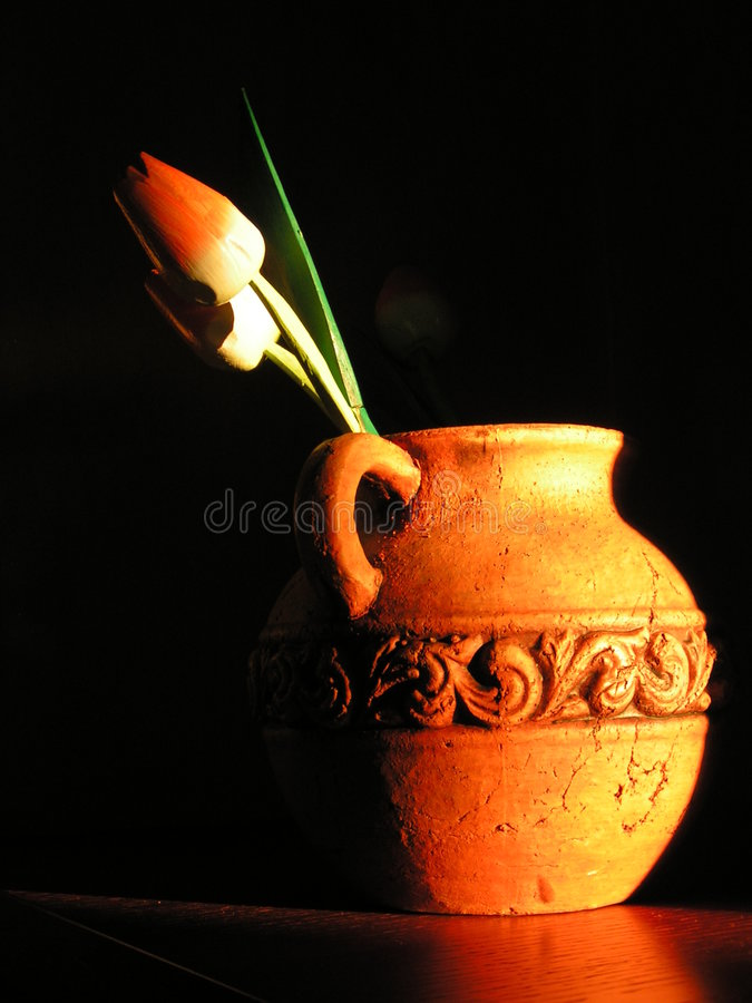 A pitcher with flowers royalty free stock image
