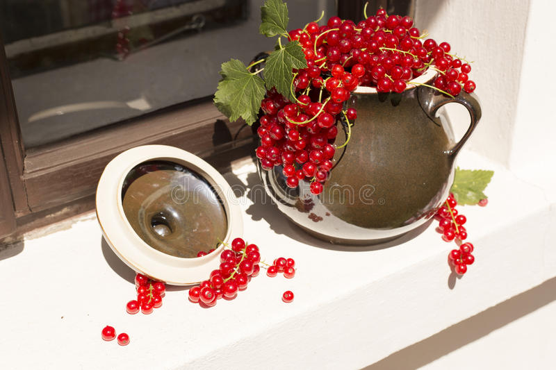 Pitcher/jug of redcurrant on a direct sunlight on a window royalty free stock photo
