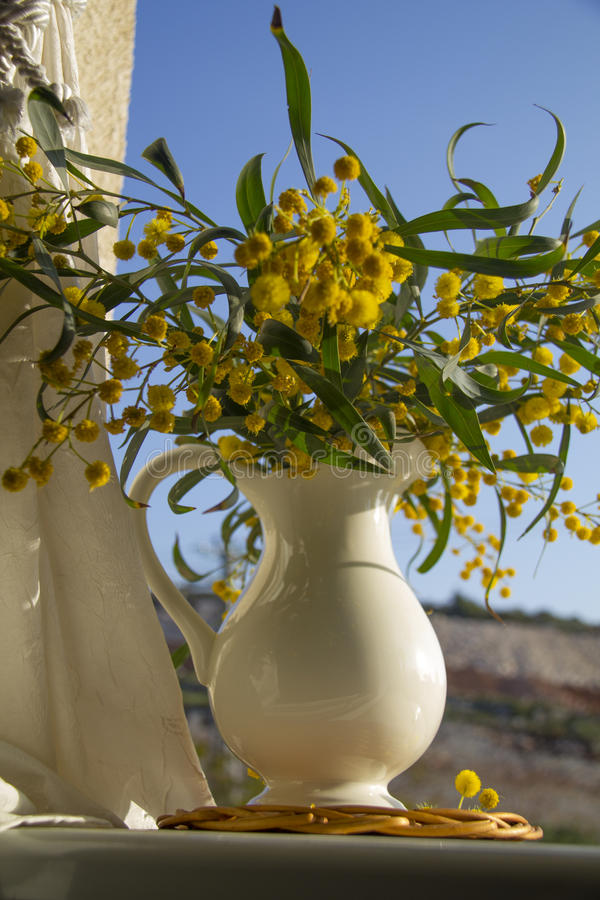 Pitcher With Yellow Mimosa On The Window Stock Photo