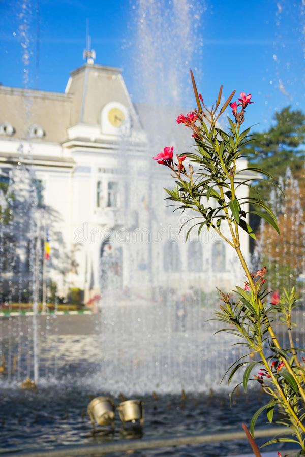 Pitesti Town Hall, Arges, Romania. Flowers and fountain in front of Pitesti town hall, Arges county, Romania royalty free stock image