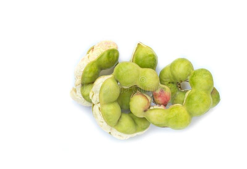 Pithecellobium dulce di vista superiore isolato su bianco fotografia stock