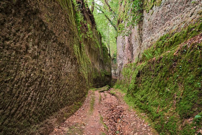 Pitigliano Grosseto, Tuscany, Italien: Etruscan via det Cava forntida diket som grävas in i tuffen, vaggar arkivbild
