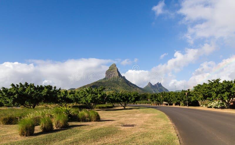 Piton de la Petite mountain in Mauritius panoramic.  stock photos