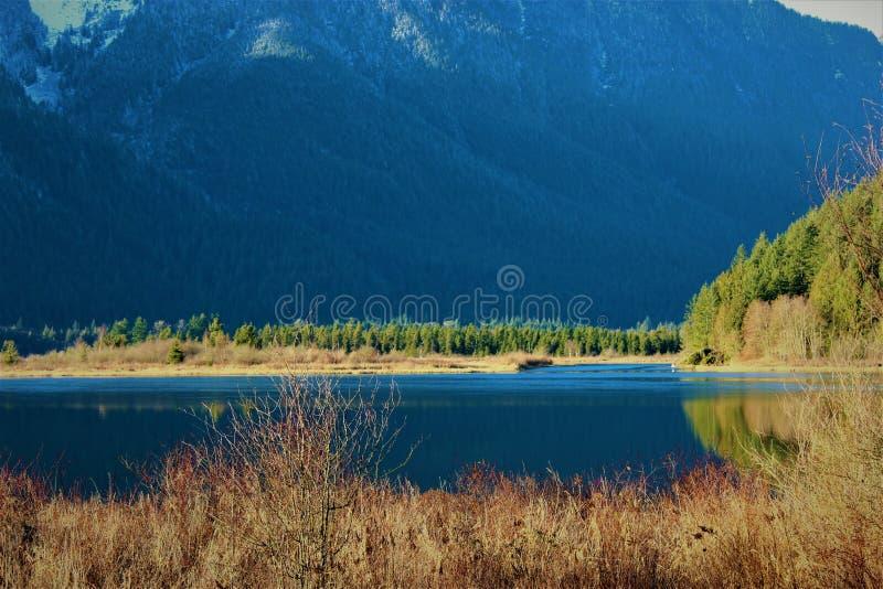 Pitt Lake Mountains fotos de stock