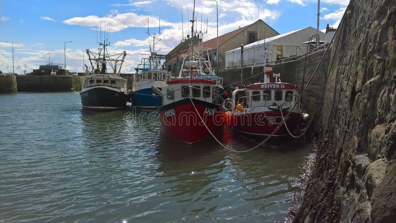 Pittenweemhaven stock afbeelding
