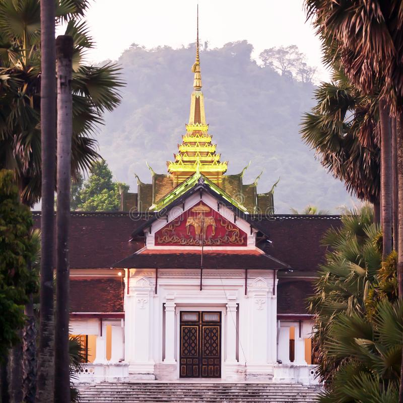 Pittoresco del museo nazionale di Luang Prabang e della palma ha allineato al crepuscolo fotografie stock libere da diritti