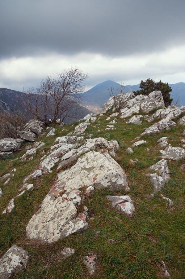 Pittoresk bergssida med vita stenar på grönt gräs på en molnig vårdag Montenegro royaltyfri fotografi