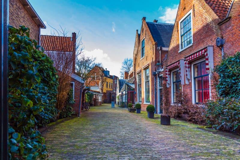 Pittoresk Haarlem gränd royaltyfria bilder