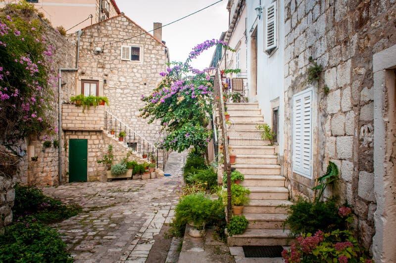 Pittoresk liten stadgatasikt i Mali Ston, kroat royaltyfri foto