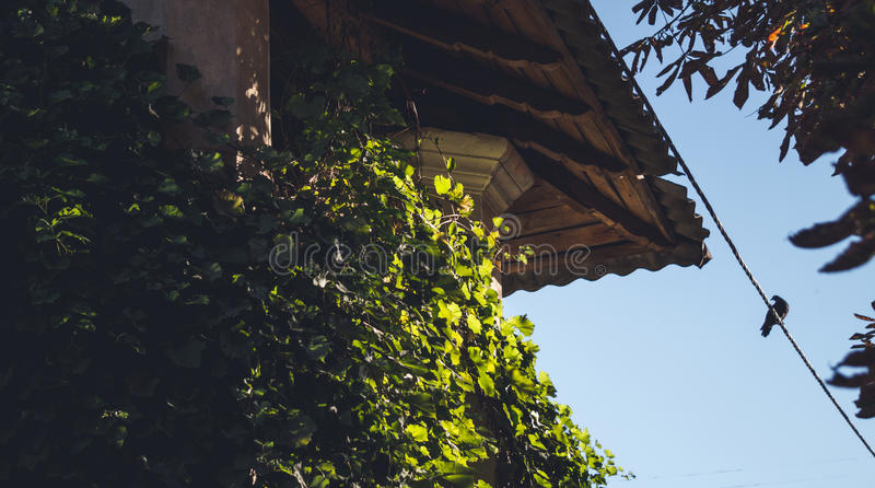 Pittoresk loft av ett gammalt italienskt hus arkivfoto