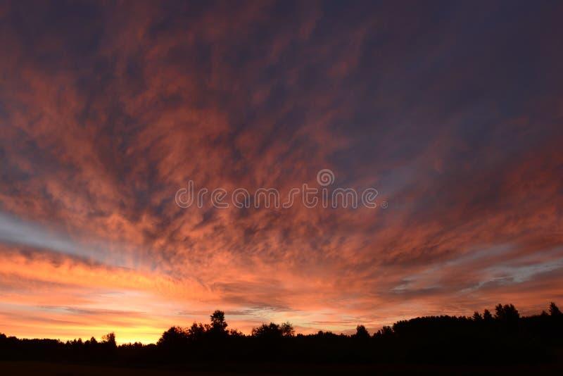 Pittoresk natur för himmelfärgpalett av sommargryning arkivfoto
