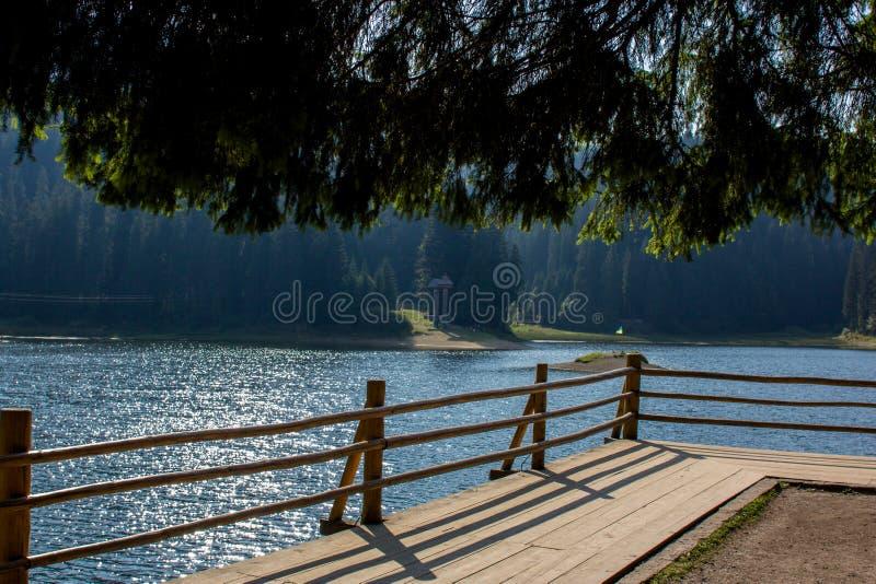 Pittoresk sikt på mountainesjön Synevyr i Ukraina i mitt av bergskogen royaltyfri foto