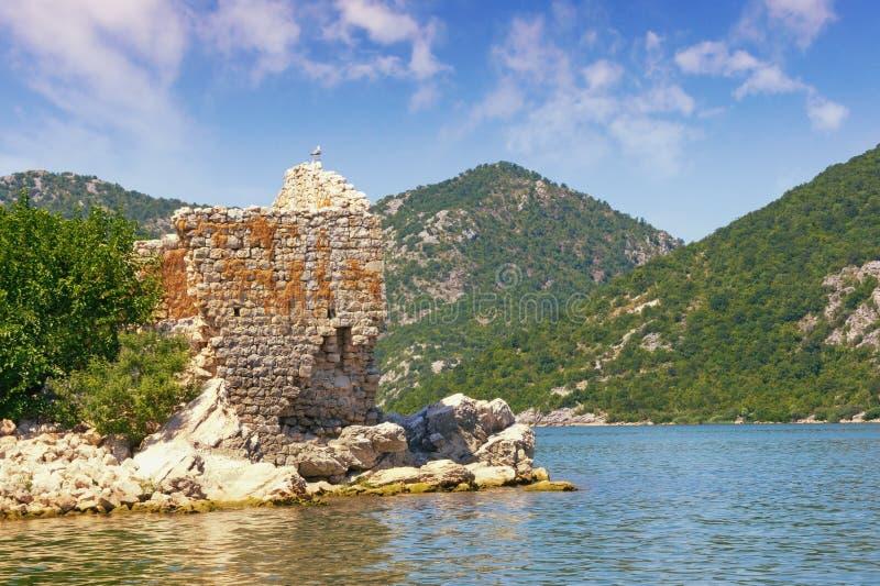 Pittoresk sjö och förstört fort på den lilla ön Sikt av sjön Skadar Fästning Grmozur Montenegro arkivbild