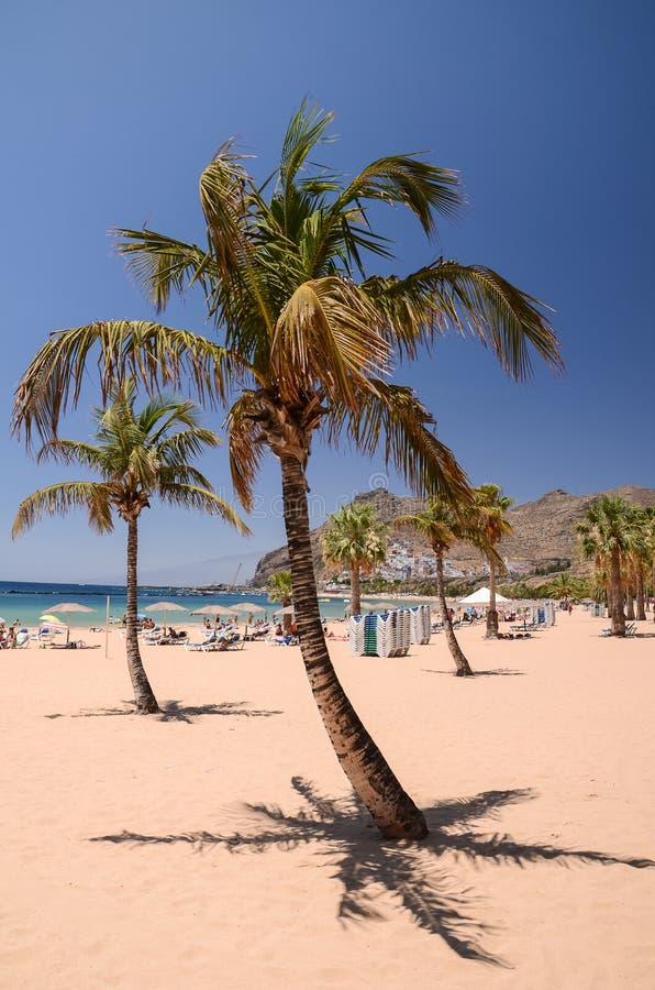 Pittoresk ursnygg sikt på den Teresitas stranden på den Tenerife ön arkivfoton