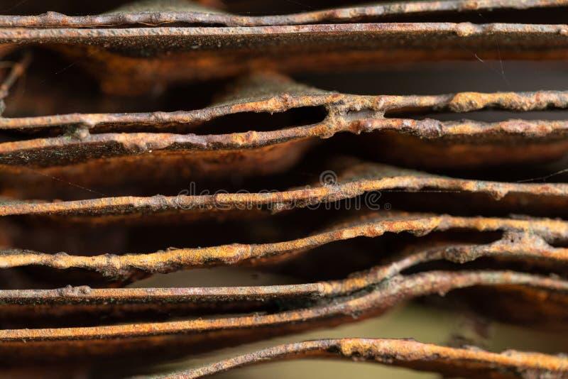 Pittoreska kr?kta ark av rostig metall Kr?kta rostiga ark av metall industriell abstraktion fotografering för bildbyråer