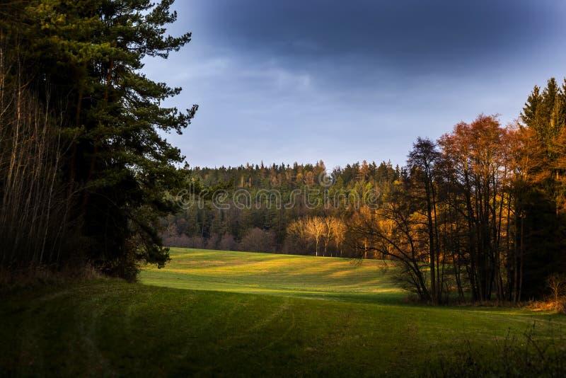 Pittoreskt landskap, fält och skog på solnedgång fotografering för bildbyråer