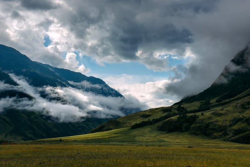 pittoreskt liggandeberg Dimma och moln, soluppgång över de gröna ängarna Dimmig sommarmorgon i bergen arkivbilder