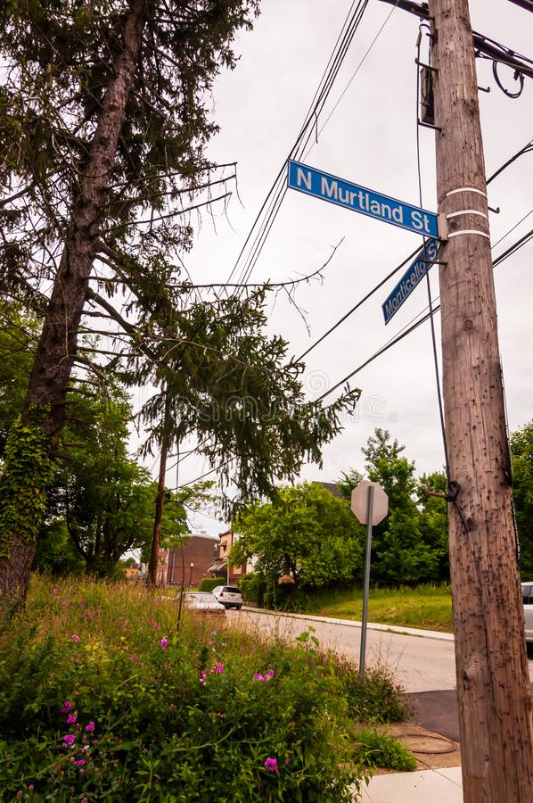 Pittsburgh, Pennsylvania, USA 06/15/2019 The telephone pole and street signs for the corner of North Murtland and Monticello Stree. Ts in the Homewood stock image