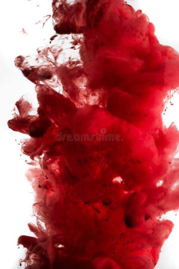 Pittura in acqua, rosso, variopinto, blu, verde, giallo fotografie stock libere da diritti
