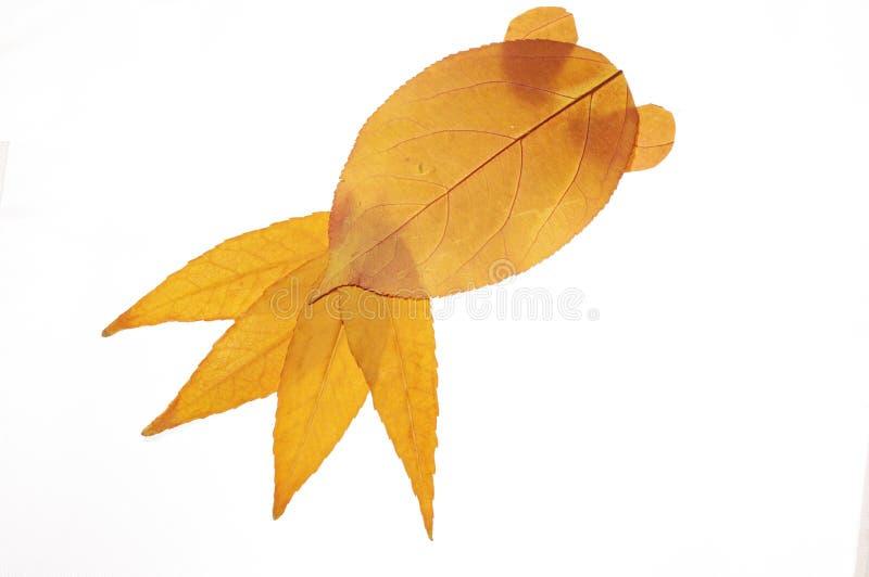 Pittura del collage con le foglie--pesce rosso illustrazione di stock