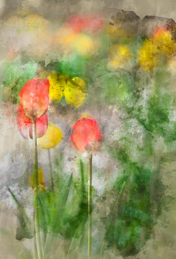 Pittura del tulipano dell'acquerello con il fondo argento verde fotografia stock