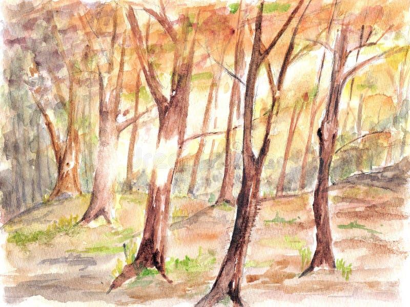 Pittura del watercolour della foresta. illustrazione di stock