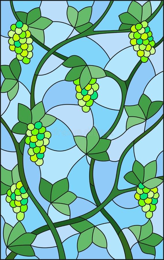 Pittura dell'illustrazione del vetro macchiato con i mazzi di uva e di foglie verdi su fondo blu royalty illustrazione gratis