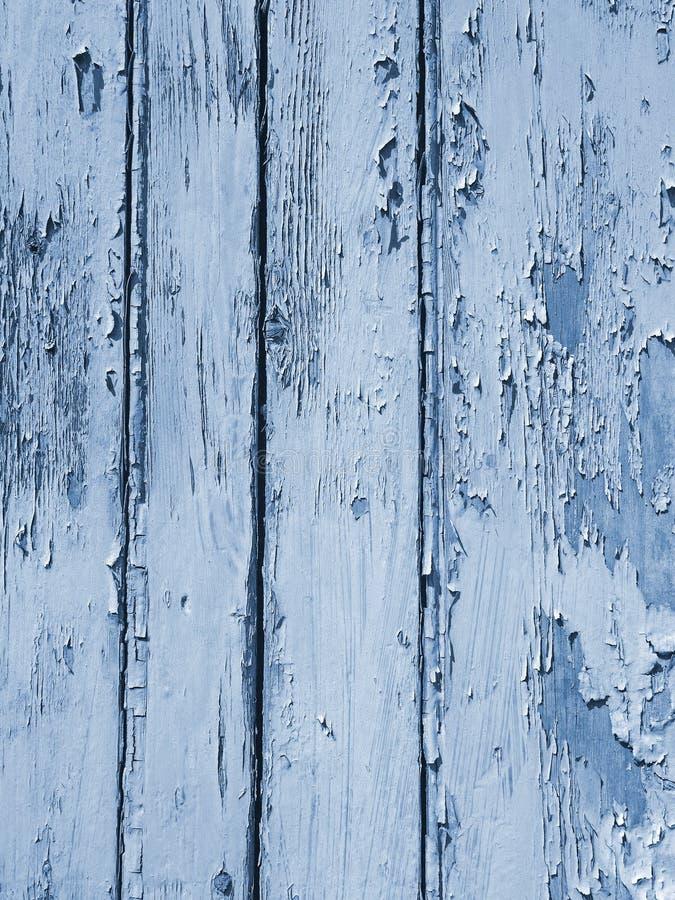 Pittura di pelatura vecchia blu luminosa di sfaldamento stratificata sulla superficie approssimativa granulare della tavola di le fotografie stock