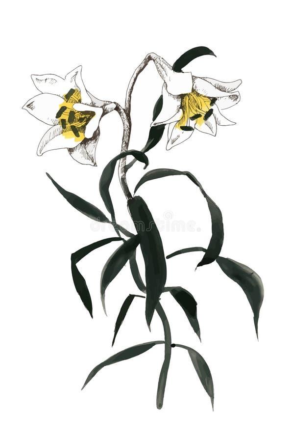 Pittura disegnata a mano con i fiori variopinti su fondo bianco royalty illustrazione gratis