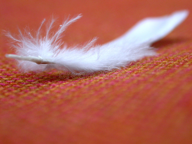 Piuma bianca e tessuto arancione fotografia stock libera da diritti