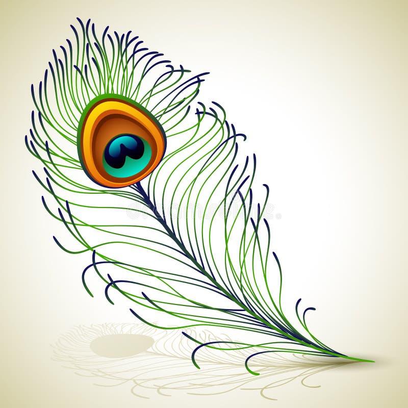 Piuma del pavone illustrazione vettoriale