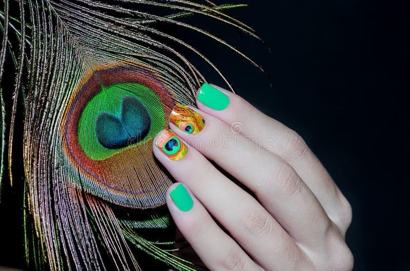 Piuma del pavone ed arte verde del chiodo fotografia stock