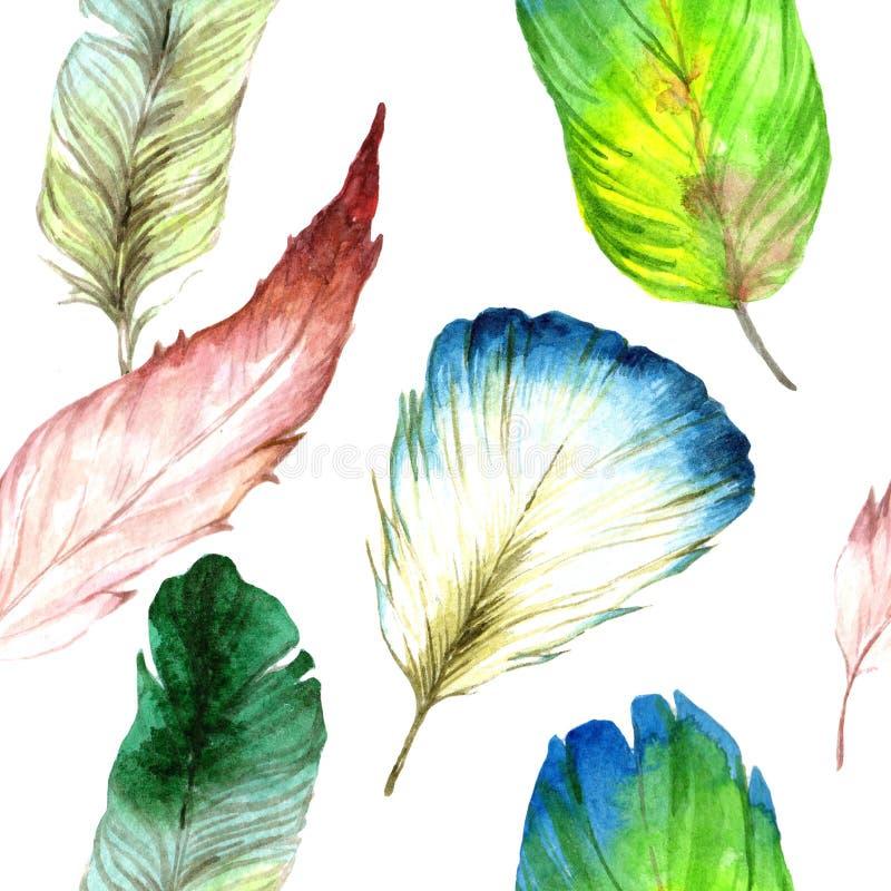 Piuma di uccello dell'acquerello dall'ala Modello senza cuciture del fondo Struttura della stampa della carta da parati del tessu royalty illustrazione gratis