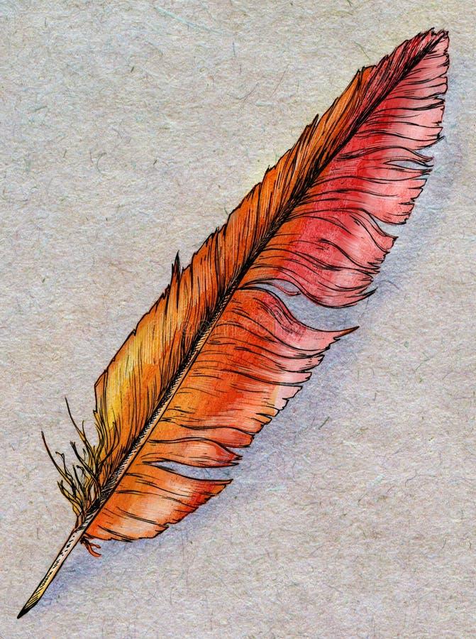 Piuma disegnata a mano di Phoenix royalty illustrazione gratis