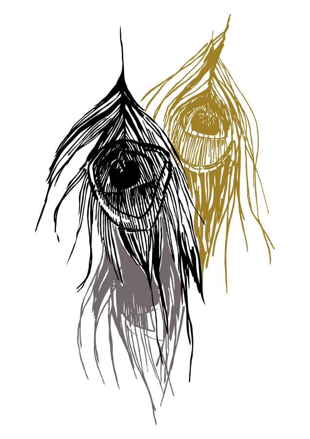 Piume 3 del pavone royalty illustrazione gratis