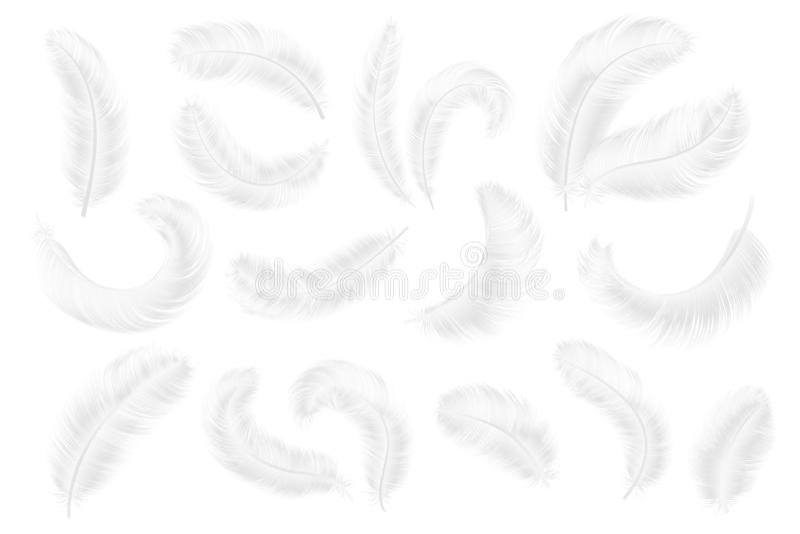 Piume bianche Piume realistiche di angelo, dell'oca o del cigno raccolta di caduta senza peso di vettore isolata piuma 3d royalty illustrazione gratis