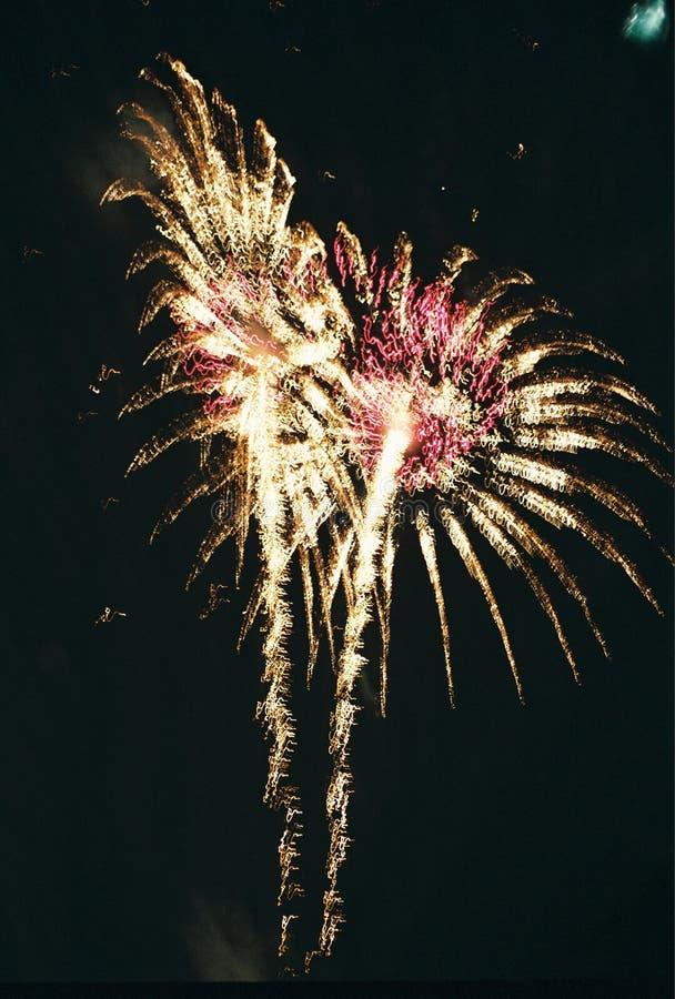 Piume dei fuochi d'artificio fotografia stock libera da diritti