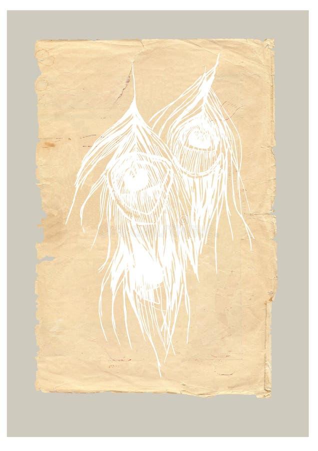 Piume del pavone di vecchio stile illustrazione di stock