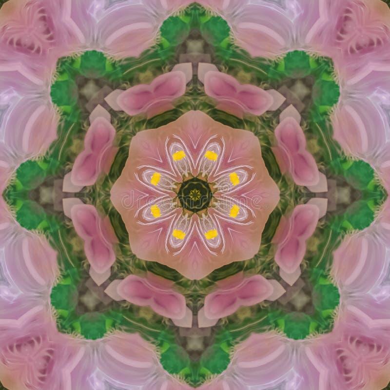 Piume quadrate che creano una circolare molto variopinta del modello royalty illustrazione gratis