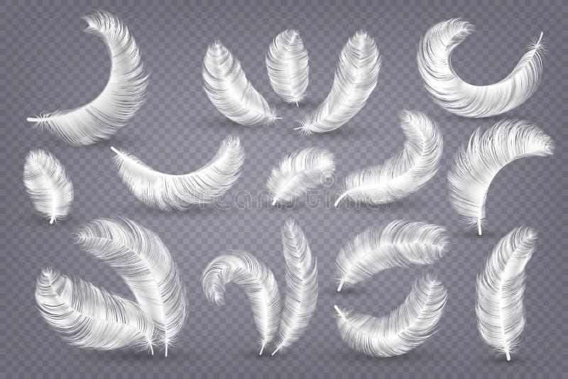 Piume realistiche Piuma bianca lanuginosa del cigno e dell'oca, vettore isolato piuma senza peso illustrazione vettoriale