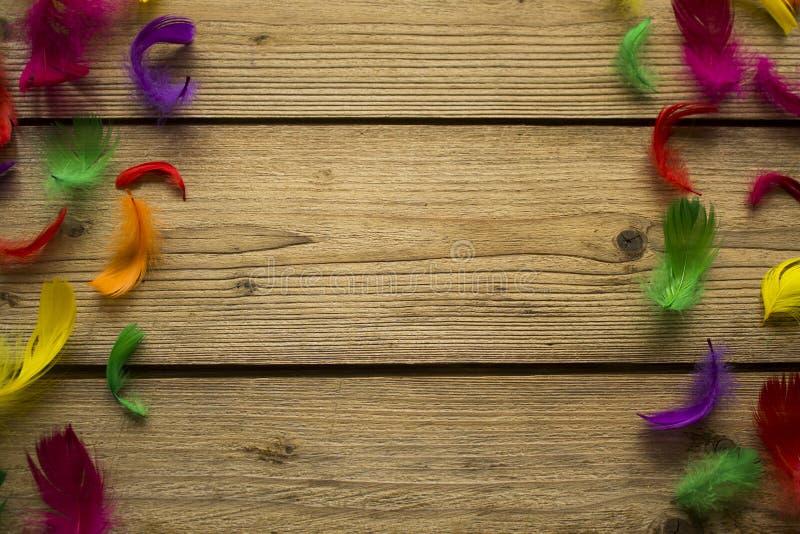 Piume variopinte sulla tavola di legno fotografie stock