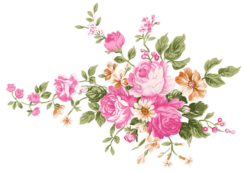 Pivoine illustration stock