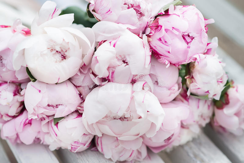pivoine blanche et rose bouquet valentine image stock image du fragilit lumi re 93618205. Black Bedroom Furniture Sets. Home Design Ideas