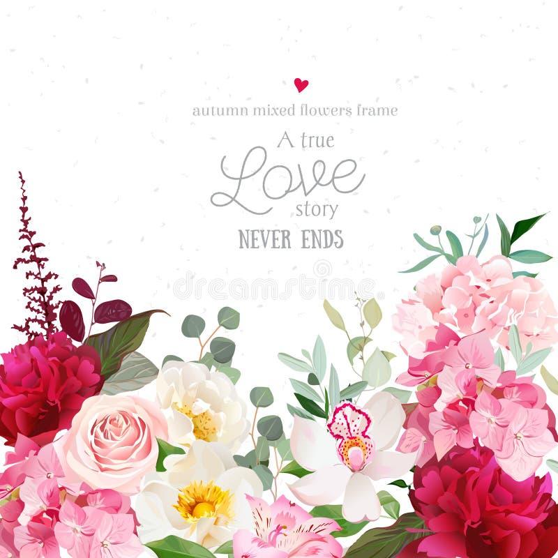 Pivoines rouges de Bourgogne, rose de rose, hortensia, carte de conception de vecteur d'orchidée illustration stock