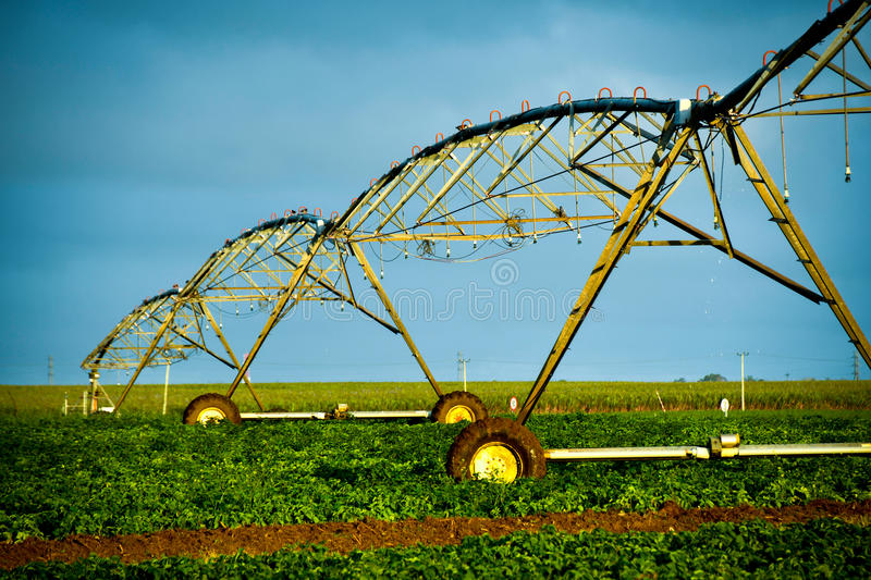 Pivot irrigation of sugar cane fields. Mauritius royalty free stock images