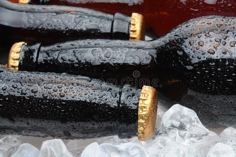 piwa butelek kłaść zbliżenia lodowy target3664_0_ zdjęcia royalty free